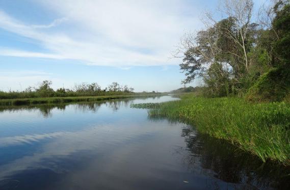 O Rio Ivinhema pertence ao Parque Estadual Das Várzeas do Rio Ivinhema, uma Unidade de Conservação (Foto: divulgação / Imasul)
