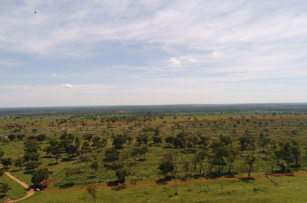 Drone constatou desmatamento - Foto: PMA