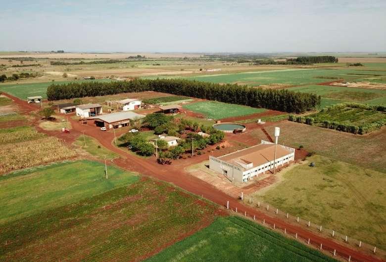 Leilão para venda de excedente de produção de soja e milho da fazenda experimental de Ciências Agrárias seria realizado hoje, mas precisou ser suspenso - Crédito: Divulgação / UFGD