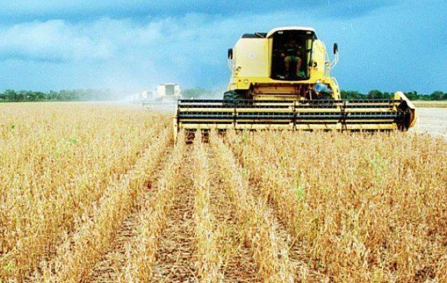 Para o Plano Agrícola Pecuário, serão reservados R$ 194,37 bilhões de crédito rural. - Crédito: Divulgação