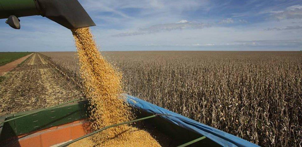 Agronegócio tem perspectiva de crescimento nos próximos 10 anos. Safra de grãos deve crescer 30% - Foto: Arquivo/Agência Brasil