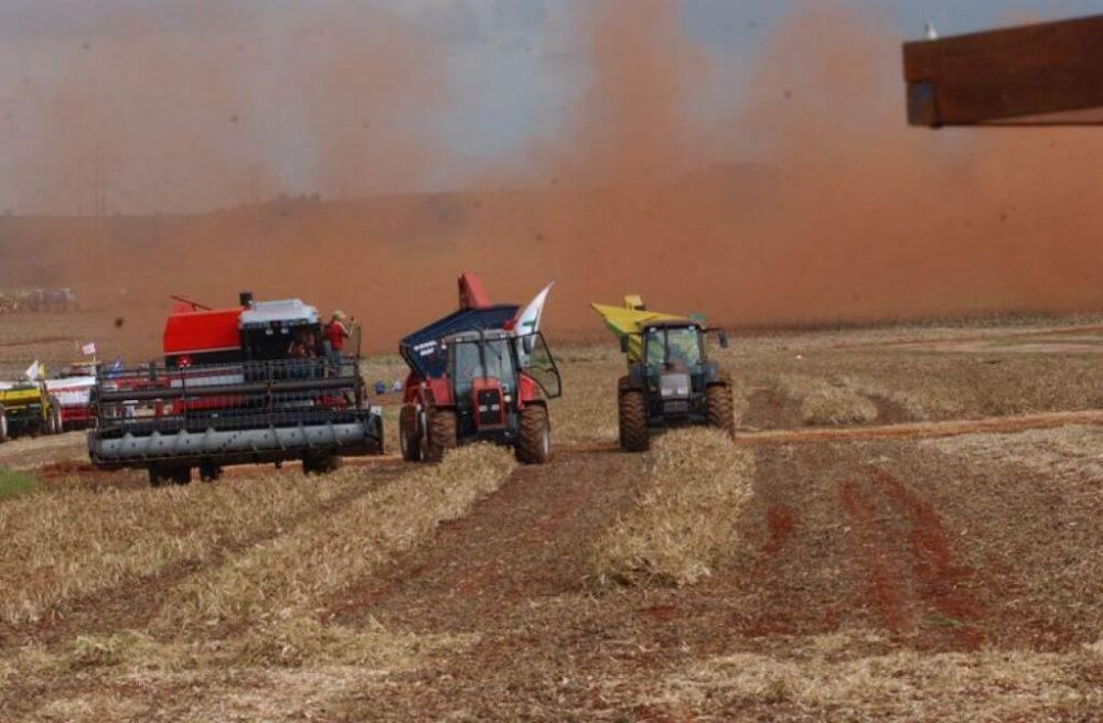 IBGE estima em 225,8 milhões de toneladas a safra de cereais, leguminosas e oleaginosas deste ano (Arquivo/Agência Brasil)