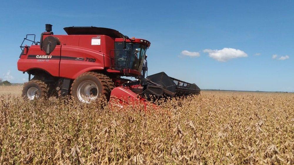 MS colheu nesta temporada 8,800 milhões de toneladas de soja; se fosse país seria o sétimo maior produtor mundial - Crédito: Anderson Viegas/G1 MS